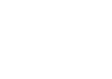 Michel Suarez Agency